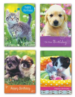 Puppies and Kittens, Birthday Cards, Box of 12  -