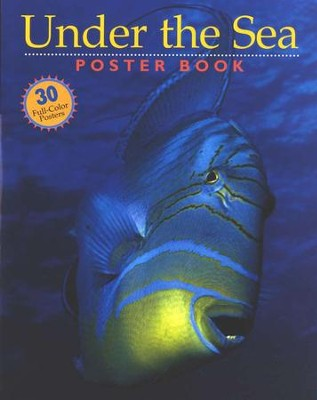 Under the Sea Poster Book   -