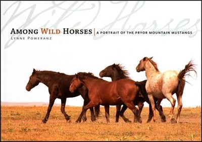 Among Wild Horses: A Portrait of the Pryor Mountain Mustangs   -     By: Lynne Pomeranz