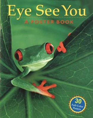 Eye See You: A Poster Book   -