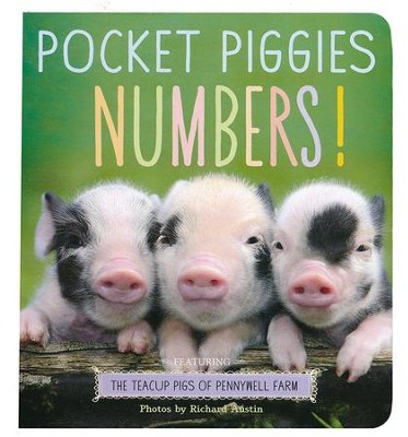Pocket Piggies: Numbers  -     By: Richard Austin