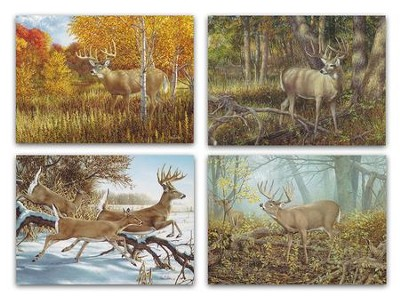 Dream Bucks Birthday Cards, 12 Cards  -