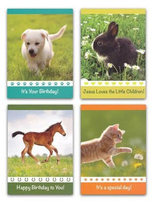 Fuzzy Friends Children's Birthday Cards, Box of 12  -