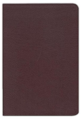 KJV Zondervan Study Bible, Bonded leather, Burgundy   -