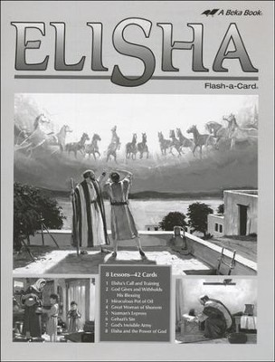 Extra Elisha Bible Story Lesson Guide   -