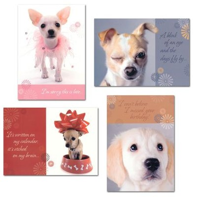 Penitent Pups Belated Birthday Cards, Box of 12  -