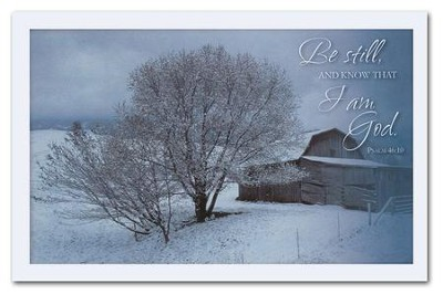 Be Still, Box of 20 Christmas Cards   -     By: David Winston