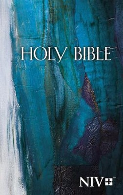 NIV Economy Bible--hardcover, blue  -