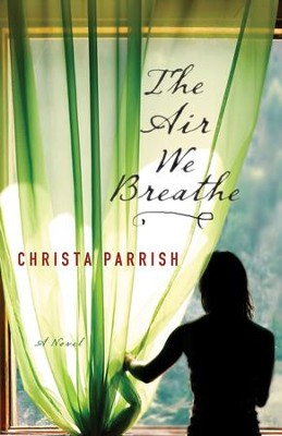 The Air We Breathe  -     By: Christa Parrish