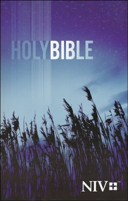 NIV Outreach Bible, Paperback   -