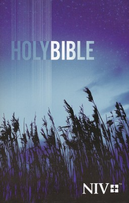 NIV Outreach Bible: Holy Bible, Case of 24   -