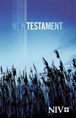 NIV Outreach New Testament, Trade Paperback   -