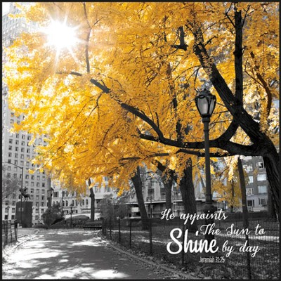 Shine By Day, Wall Art  -