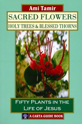 Sacred Flowers-Holy Trees & Blessed Thorns: Fifty Plants in the Life of Jesus  -     By: Ami Tamir