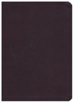 KJV Life Application Study Bible, Bonded leather, Burgundy   -     By: Bible