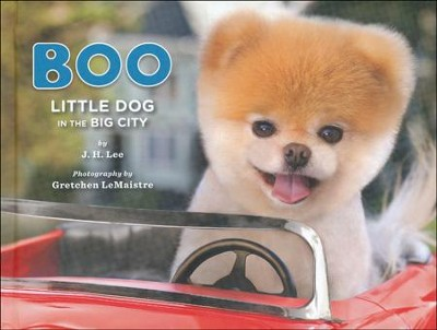 Boo: Little Dog in the Big City  -     By: J.H. Lee, Gretchen LeMaistre