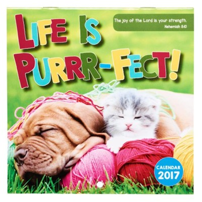 2017 Life Is Purrr-Fect! Calendar, Small  -