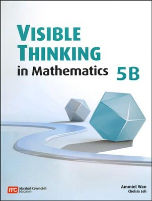 Visible Thinking in Mathematics 5B   -
