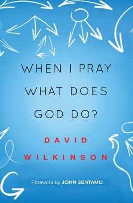 When I Pray, What Does God Do?  -     By: David Wilkinson