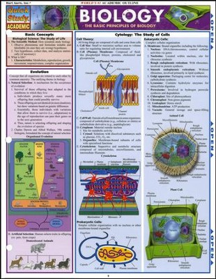 Biology, Laminated Guide  -     By: Randy Brooks
