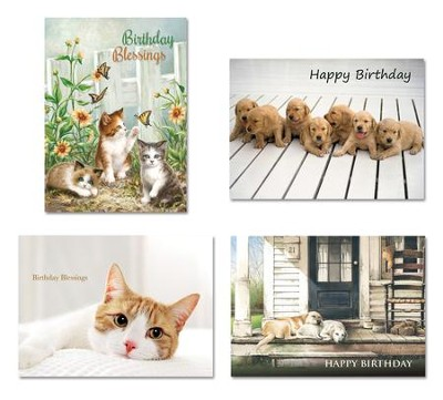 Cats Dogs Birthday Cards Box Of 12 Dona Gelsinger
