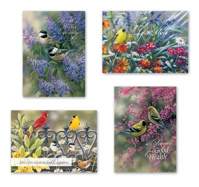 Birds Get Well Cards, Box of 12  -     By: Rosemary Millette