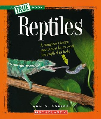 Reptiles  -     By: Ann O. Squire