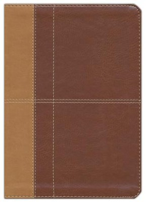 The KJV Cross Reference Study Bible - Imitation Leather (masculine)  -     By: Christopher D. Hudson
