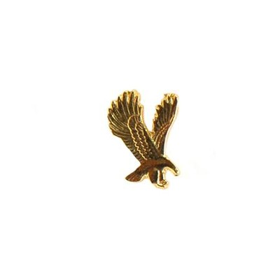 Eagle Lapel Pin  -