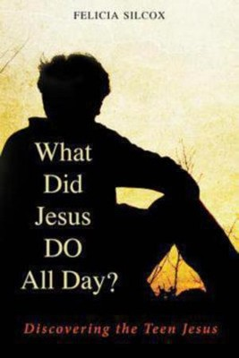 What Did Jesus Do All Day?: Discovering the Teen Jesus  -     By: Felicia Silcox