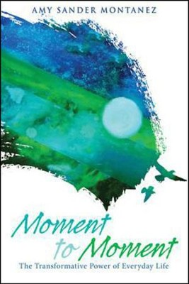 Moment to Moment: The Transformative Power of Everyday Life  -     By: Amy Sander Montanez