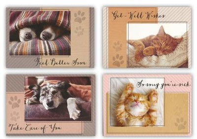 Quiet Reflections, Get Well Cards, Box of 12  -