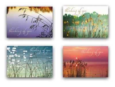 God's Beauty, Thinking Of You Cards, Box of 12  -