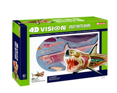 Great White Shark Anatomy Model, 4D Vision  -