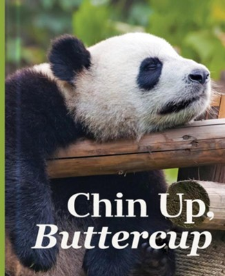Chin Up, Buttercup  -
