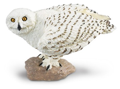 Wings to the World Birds, Snowy Owl  -