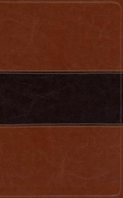 KJV Study Bible, Brown/Tan   -