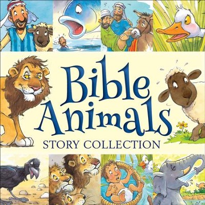 Bible Animals Story Collection  -     By: Juliet David