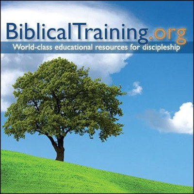 Theology of Ministry: A Biblical Training Class (on MP3 CD)  -     By: John Johnson