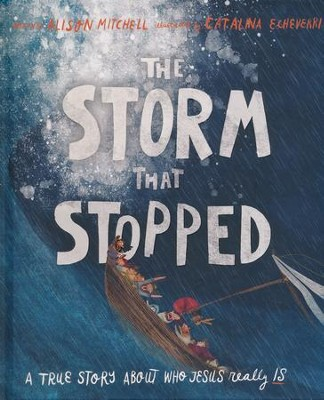 The Storm That Stopped: A True Story About Who Jesus Really Is  -     By: Alison Mitchell     Illustrated By: Catalina Echeverri