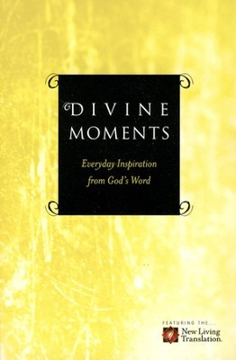 Divine Moments  -     By: Ronald A. Beers, Amy E. Mason