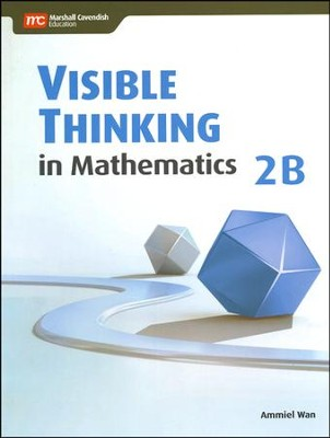Visible Thinking in Mathematics 2B   -
