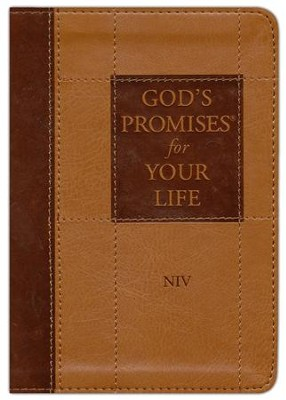 God's Promises for Your Life: New International Version  -     By: Jack Countryman