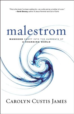 Malestrom: Manhood Swept into the Currents of a Changing World  -     By: Carolyn Custis James