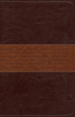 NLT One Year Bible Slimline Edition, TuTone Leatherlike Brown/Tan  -