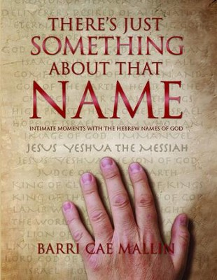 There's Just Something About That Name - eBook  -     By: Barri Cae Mallin