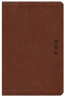 The NLT Wayfinding Bible, Brown/Tan LeatherLike  -     By: Doris Rikkers, Jeannette Taylor