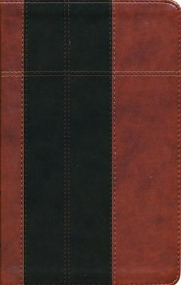 KJV Study Bible--soft leather-look, chocolate/brown (indexed)  -