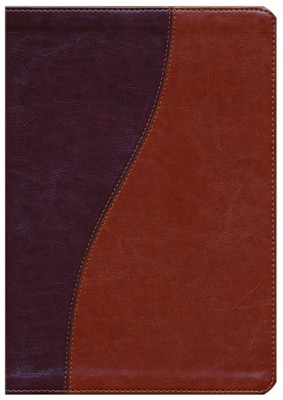 Biblia Diario Vivir RVR 1960, Piel Imit. Cafe/Cafe Claro, Ind.  (RVR 1960 Life Appl. Bible, Imit. Leather Brown/Tan Ind.)  -