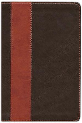 NLT Life Application Study Bible, Large Print TuTone Leatherlike Brown/Tan  -